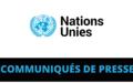 Le Conseil de sécurité augmente l'effectif de la Mission des Nations Unies en République centrafricaine