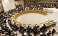 Security Council Committee concerning Central African Republic Adds One Individual to Its Sanctions List