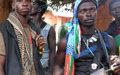 Le BINUCA vivement consterné par l'attaque au village Korom M'Poko