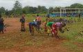 Embellir Bangassou pour améliorer les conditions de vie des populations