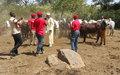 Niem-Yéléwa : quand un projet de réduction de la violence communautaire porte ses fruits
