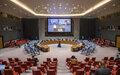 RCA : l'ONU signale des progrès significatifs à l'approche des élections