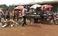 Une opération de salubrité pour faire baisser les violences communautaires à Kaga-Bandoro