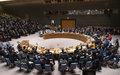 République centrafricaine : le Conseil de sécurité prêt à réexaminer les mesures d'embargo sur les armes