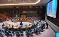 Le rapport du Secrétaire général des Nations Unies sur la République centrafricaine présenté au Conseil de Sécurité